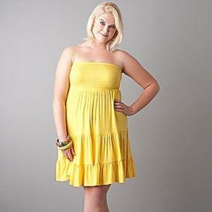 Lane Bryant Sz 22/24 Smocked Swim Cover Dress
